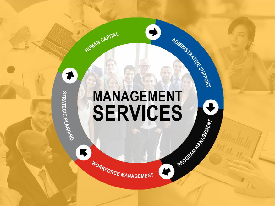 Management Servics Diagram 2